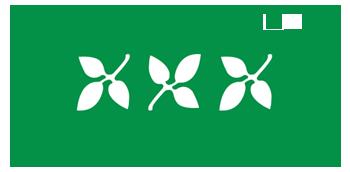 Splurge Skincare logo